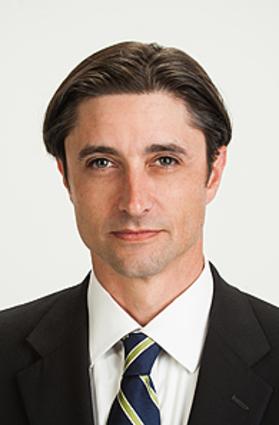 Steve Palme - The Palme Law Firm, P.A.
